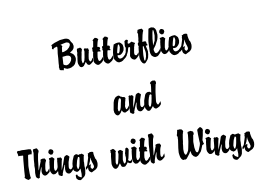 Butterflies  and  Things with Wings