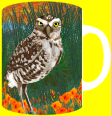BURROWING OWL & POPPIES
