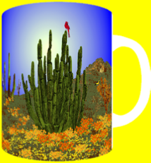 ORGAN PIPE POPPIES
